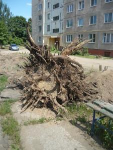 Комсомольская 288 4