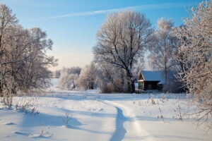 Seasons_Winter_Russia_364232